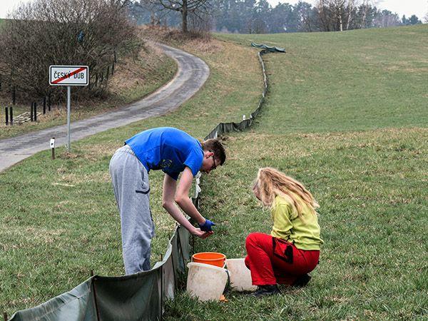 Ekologická výchova dětí v Libereckém kraji